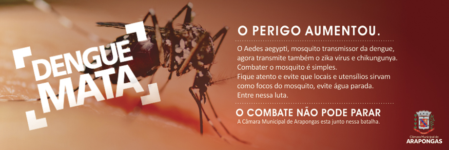 Banner Dengue 2